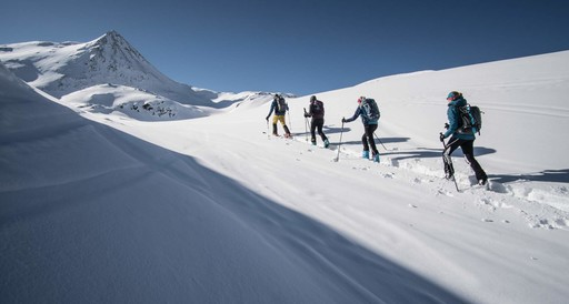 Ski Mountaineering with instruction